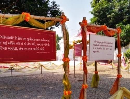 Distribute Vedic Knowledge